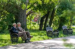 Zaterdagmiddag in het park (Bart Weerdenburg) Tags: park romania parc bucharest bankje boekarest relaxen roemeni oudemannetjes