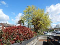 2016_04_230010 (Gwydion M. Williams) Tags: uk greatbritain england britain coventry westmidlands warwickshire