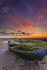 La Barca de Nstor - Ria de Aveiro (paulosilva3) Tags: sun portugal colors clouds sunrise de landscape boats lee filters ria aveiro manfrotto waterscape lowepro boatscape