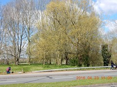 2016_04_230009 (Gwydion M. Williams) Tags: uk greatbritain england britain coventry westmidlands warwickshire