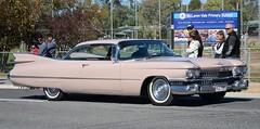 DSC_4850 1959 Cadillac Eldorado (johnjennings995) Tags: australia cadillac eldorado southaustralia 1959 mclarenvale cadillaceldorado