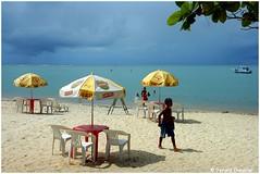 Coroa Vermelha - Praia. (gerard21081948) Tags: mer brasil parasol bahia bateau paysage enfant extrieur plage brsil cocotier rivage coroavermelha littoral