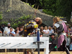 S0640928 (rgmccarty) Tags: renfaire joust scarboroughfaire scarby