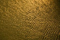 Ripples (Kaniz Khan 2009) Tags: water golden pond waves tank ripples