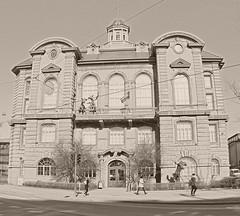 Institutum Zoologicum (ri Sa) Tags: street people building history museum finland helsinki natural institutum zoologicum