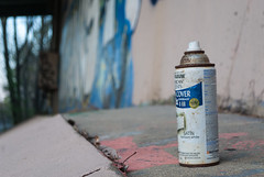 Started From The Can (mastapeaceufd) Tags: bridge blue trees green nature leaves animals trash corner train fence underpass walking graffiti golden spring traintracks tracks angles posing final spike barrier spraypaint walls vibes paws tagging bombing position pathway sunsetting throwups curiousity documenting goldentime spraypaintcan triadcolors finalprojectpart4