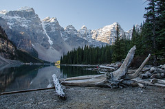 RGI_6232 (riccardogiovanoli) Tags: trees mountain lake snow forest moraine lakemoraine