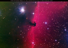 IC434_LRGB image (cairnsnaturealbum) Tags: sky north australia southern nebula astrophotography pro cairns ic434 horsehead nq deepsky baader skywatcher qeensland heq5 astroart qhy9m bkp200 mpccmkiii
