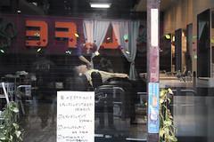 LIFE (ajpscs) Tags: street people japan japanese tokyo nikon streetphotography d750  nippon  shitamachi abitofme apieceofme   ajpscs higashinagano fisheyelens