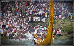 2774825638_c827317ca2_b (|| Nellickal Palliyodam ||) Tags: india race temple boat snake kerala pooja krishna kochi devi aranmula avittam parthasarathy vallamkali parthan uthsavam palliyodam malakkara koipuram poovathur kodiyettu nellickal kuriyannoor jalothsavam
