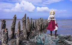 Nordseepocken (noctilon) Tags: ocean park wood sea sky cloud net night clouds zeiss 35mm germany geotagged deutschland nationalpark wadden fishing doll timber sony horizon north wide dream fishnet national pile saber bjd lower fe dd dollfie volks alter za peg nordsee f28 saxon codes wattenmeer carlzeiss gamut fatestay ataraxia harlesiel fatehollow a7r seepocken balanidae niederschsisches   fateunlimited ilce7r geo:lat=53710712 geo:lon=7801673
