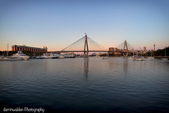 Sydney's Anzac Bridge_ (darrinwalden Photography) Tags: bridge marina boats harbour australia anzac sydneyn