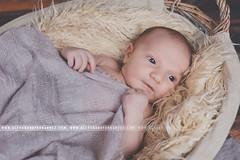 IMG_3567 (Alexandre66) Tags: baby france canon 66 newborn l bebe usm f28 perpignan 6d nouveaun 1635mm pyreneesorientales