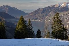 Lake Walenstadt (Thomas Mülchi) Tags: switzerland flumserberg walensee churfirsten 2015 cantonofstgallen tannenbodenalp lakewalenstadt churfirstenmountainrange