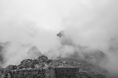 _DSC9369 (David Visual) Tags: trees bw white mountain black mountains tree blanco peru machu picchu cuzco leaf y negro pic leafs wayna qosqo