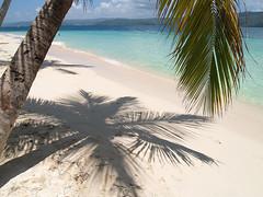 Cayo Levantado, Republica Dominicana. (claramunt.merche) Tags: republica costa naturaleza mar sombra playa olympus palmeras dominicana isla caribe e500
