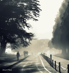 Misty morning walkers (Arun S Pillai) Tags: park morning travel people nature monochrome weather misty walk auckland nz