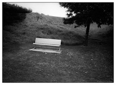 waiting  #350 (lynnb's snaps) Tags: park film landscape tmax3200 kodak sydney j8 longreef benchseat iiic 201602