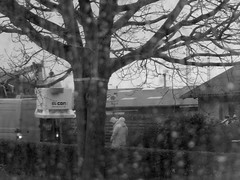 Storm Imogen (Landanna) Tags: bw white black rain raindrops zwart wit atwork sort regen regn hvid zw regendruppels parbejde aanhetwerk dikkeregendruppels stormimogen