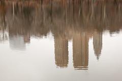 Central Park Reflection_7369 (adp777) Tags: nyc newyorkcity centralpark manhattan