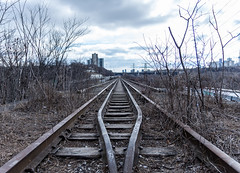 Abandoned Railroad Tracks (vince.ng86) Tags: railroad toronto tracks evergreen brickworks