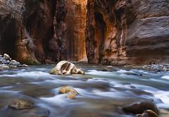 Wall Street (Laura Zirino) Tags: water landscape landscapes utah ut zion zionnationalpark nationalparks slotcanyons virginriver thenarrows