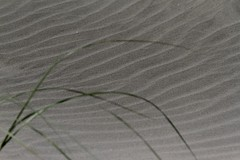 Black sand patterns 1 (bichane) Tags: canada black west beach coast sand bc britishcolumbia patterns vancouverisland tofino windblown