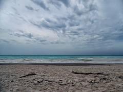 Spiagge bianche (G A B R I H A L O) Tags: wood blue sea sky italy white beach clouds italia nuvole mare grigio toscana bianco spiaggia legno sabbia celeste spiaggebianche
