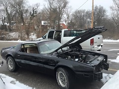 """1978 Bandit Trans Am • <a style=""""font-size:0.8em;"""" href=""""http://www.flickr.com/photos/85572005@N00/25966687700/"""" target=""""_blank"""">View on Flickr</a>"""