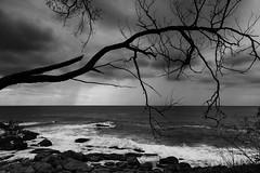 Dark and moody (ImagesByLin) Tags: ocean sea holiday monochrome canon dark landscape mono bay coast blackwhite moody cloudy silhouettes dramatic southwestrocks adifferentview