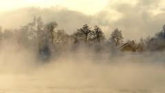 Harakka islet in sea smoke at below -20°C (Helsinki, 20160106) (RainoL) Tags: 2016 201601 20160106 brunnsparken cold fin finland frostsmoke geo:lat=6015462607 geo:lon=2495985388 geotagged harakka helsingfors helsinki january kaivopuisto kaivopuistonranta merisavu nyland seasmoke steamfog storaräntan uusimaa winter balticsea sea