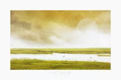 ici et demain (patrice ouellet - OFF) Tags: marsh tomorrow marais hereandnow beyondhereandnow icietmaintenant patricephotographiste