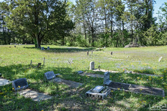 DSC_0290.jpg (SouthernPhotos@outlook.com) Tags: cemetery us unitedstates alabama sumtercounty larrybell browncemetery emelle larebel larebell