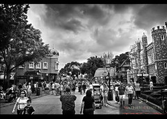 Clearcut (Mat Charette) Tags: old travel family sunset sky people blackandwhite bw usa canada flower castle art nature dark nikon hdr d5000