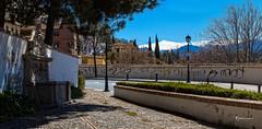 Pilar de Escoriaza (Stilnados) Tags: pilar calle andaluca alhambra granada sierranevada realejo