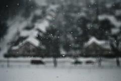snowstorm (vasilina.bogdanova) Tags: winter snow snowstorm coldoutside file:md5sum=a3540aaca879744e10998c0b6b3922f1 file:sha1sig=b7755aacd3cdd92ef7581721274e6d348fa22dfd