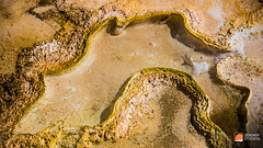 2015 09 Fine Art - The National Parks 047 Yellowstone - Microbial Mat (Deremer Studios) Tags: desktop sunset wallpaper night landscape photography grandcanyon unitedstatesofamerica fineart scenic arches astrophotography yellowstonenationalpark yellowstone rockymountains hd wyoming grandtetons nationalparks 1080p deremerstudios