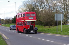 IMGP0099 (Steve Guess) Tags: uk england bus london museum transport surrey gb cobham regent weybridge brooklands weymann aec rlh byfleet lowhight rlh61 mxx261