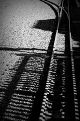 107.365.2016 (johnny the cow) Tags: blackandwhite monochrome wales fence photo shadows diary cymru tracks rail railway aberystwyth collection 365 catalogue ceredigion devilsbridge 2016 narrowguage aphotoaday 366 pontarfynach valeofrheidol