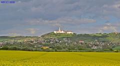 DSC_0082n wb (bwagnerfoto) Tags: abbey landscape hungary unesco hills landschaft raps rapeseed tjkp abtei pannonhalma aptsg repce