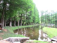 Natureza (tinica50) Tags: farm serra paisagens mantiqueira stoantoniodopinhal fazendaarcoiris