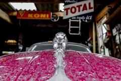 Jaguar XK50 (Isabelle Gallay) Tags: street city red urban color car rouge fuji 33 garage voiture fujifilm jaguar couleur ville urbain aquitaine gironde saucats fujix30