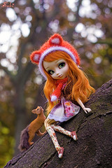 Feeling like a fox~* (Suki) Tags: orange ginger outdoor redhead fox pullip pullips classicalalice