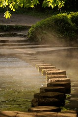 Stepping Stones in the mist (smcnally24601) Tags: england mist tree water woodland river spring box britain stones hill surrey national stepping trust mole