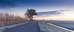 Winter in Holland (Wim Boon Fotografie) Tags: winter holland canon nederland lee alblasserwaard alblasserdam statief wimzilver wimboon canonef2470mmf28liiusm molentocht2016