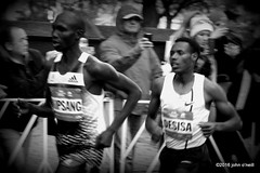 2014 nyc marathon (o'neill_) Tags: nyc manhattan nycmarathon 2014 59thstreet