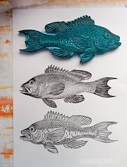 carving_a_fish_stamp4743.jpg (KristinaMariaS) Tags: printing stempel stampcarving handcarvedstamp drucken stempeln amliebstenbunt kristinaschaper