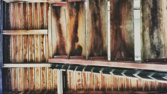 21/366 Under the deck #366 #366days #architecture #queenslander #home (bartman_6) Tags: home architecture queenslander 366 366days