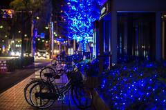 Hotel East 21 Tokyo Hotel () (Kelvin Wun) Tags: street bicycle japan nikon bokeh     d610 tky