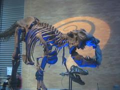IMG_4267 (FigmentJedi) Tags: minnesota dinosaurs sciencemuseumofminnesota